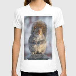 Squirrel Peched T-shirt