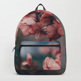 Dead Fires. Backpack