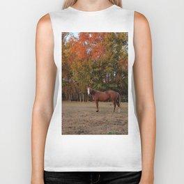 Where is My Horse Hay? Biker Tank