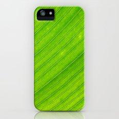 banana leaf Slim Case iPhone (5, 5s)