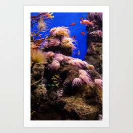 Sea Bed #2 Art Print