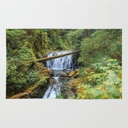 Dutchman Falls - Columbia River Gorge Oregon Rug
