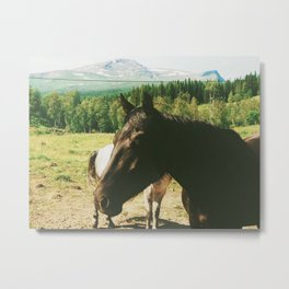 Band of Horses Metal Print