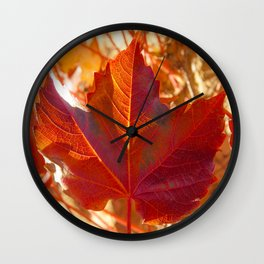 maple leaf. Autumn in Zamora. Spain Wall Clock