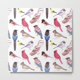 Endangered wild birds species watercolor painting- Cardinals, titmouse ,bushtit, cedar waxwing ,barn Metal Print