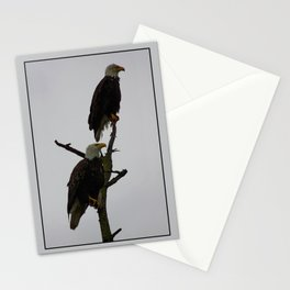bald eagle pair in the rain Stationery Cards