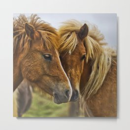 Two horses portrait  Metal Print