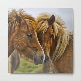 Two horses portrait  Metal Print