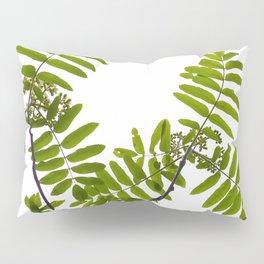 Green Rowan Leaves White Background #decor #society6 #buyart Pillow Sham