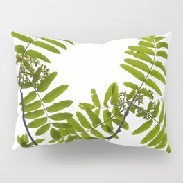 Green Rowan Leaves White Background #decor #society6 #buyart Pillow Sham