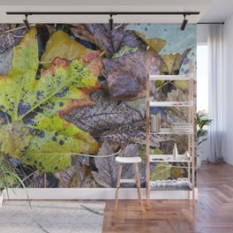 Rainy Leaves. Forest Dreams Wall Mural