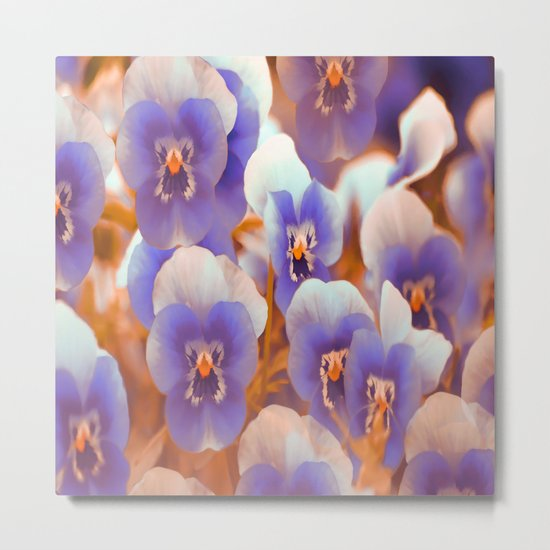 Violets in late summer Metal Print
