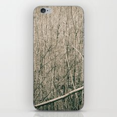 Can't see the Trees for the Wood iPhone & iPod Skin