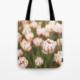 Candy Tulips Tote Bag
