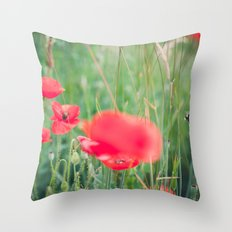 fly, bumblebee, fly Throw Pillow
