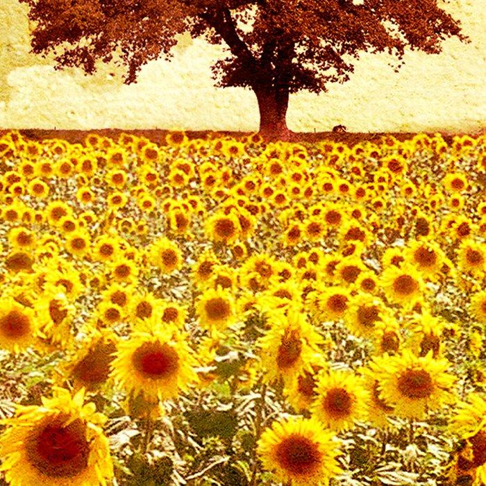 lone tree & sunflowers field Leggings