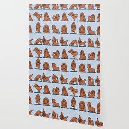 Cocker Spaniel  Yoga Wallpaper