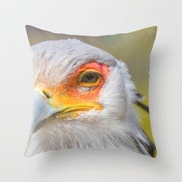 Secretarybird Close up portrait, African bird of prey (Sagittarius serpentarius) Throw Pillow