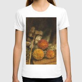 Still life #31 T-shirt
