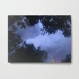 who else waits for the rain? Metal Print