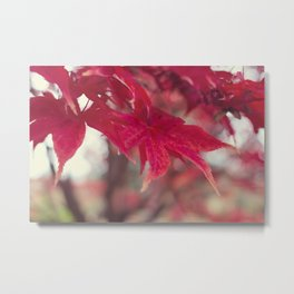 Fire Red Metal Print