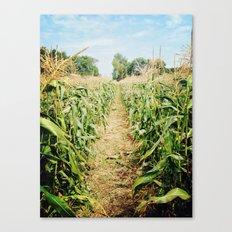 cornfield Canvas Print