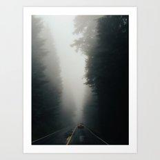 Dark Forest Driving Art Print