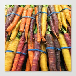 Carrot of many colors - Heritage Vegetables bloom! Canvas Print