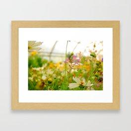 Spring Pastels Framed Art Print