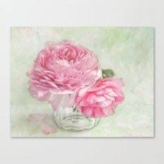 sweet spring Canvas Print