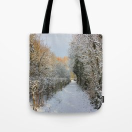Winter Walkway Tote Bag