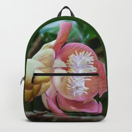 Cannonball Flower Backpack