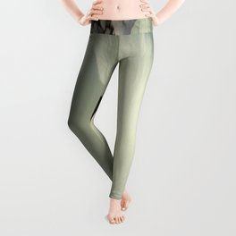 Overhead View of A White Calla Lily Against Pebbles Leggings