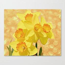Sparkling Daffodils Canvas Print
