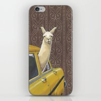 morning iPhone & iPod Skins featuring Taxi Llama by Jason Ratliff
