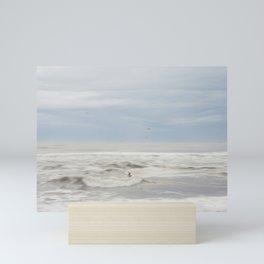 Flight of the Seagul Mini Art Print