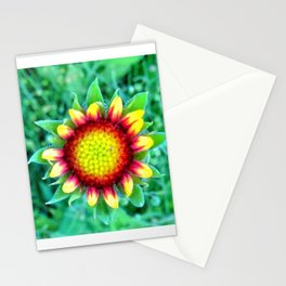 Open Stationery Cards