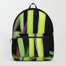 Waterlilly Backpack