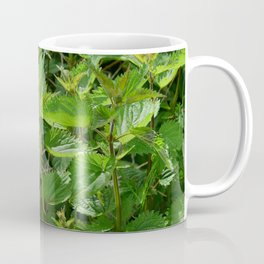 Stinging Nettle Urtica Coffee Mug