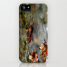 Stream & Leaves iPhone Case