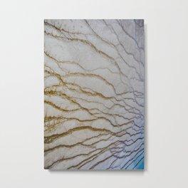 Limestone, No. 2 Metal Print