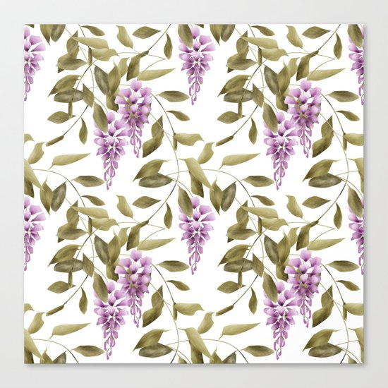 The Branches Of Wisteria .  White background . Canvas Print