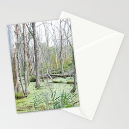 Swamp Water and Dead Trees Stationery Cards