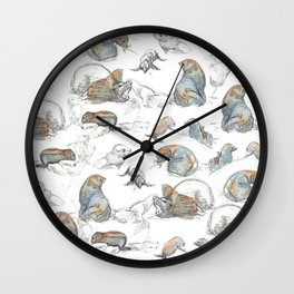 sketch of New zealand seals Wall Clock