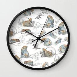 sketch of New zealand seals Wall Clock