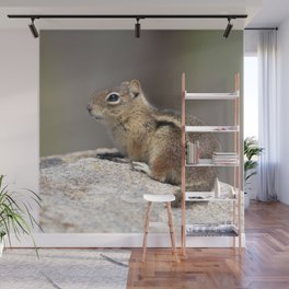 Watercolor Golden-Mantled Ground Squirrel 01, Dunraven Trail, Colorado, On Top of the World Wall Mural