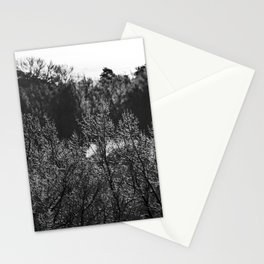 Frosted Tips Stationery Cards