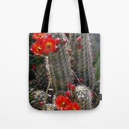 New Mexico Cactus Tote Bag