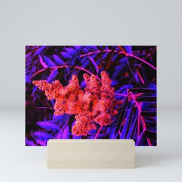 Red and Blue Sideways Sumac Mini Art Print