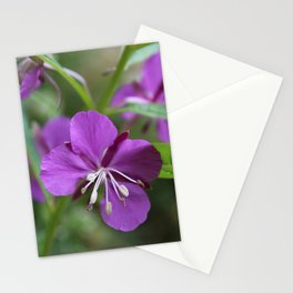 Pretty Fireweed 2 Stationery Cards